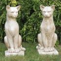 Gatti di Lucifero (coppia)