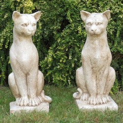 Cats Lucifer (pair)