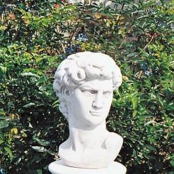 Bust David