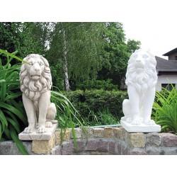 Coppia leone