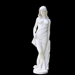 Venus conciliatory