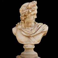 Busto Apollo