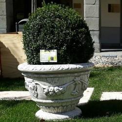 Hydrangea Vase (Large)