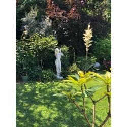 Vergogna media - statua da giardino in graniglia di marmo di Carrara