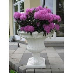 Fern Vase (Large)